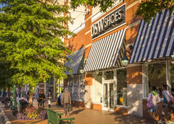 Downtown Silver Spring: DSW